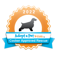Cocker Spaniel Badge