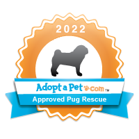 Pug Badge