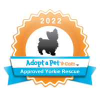 Yorkie Badge